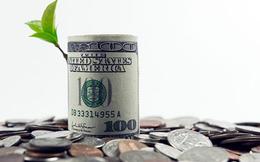 Điểm danh những doanh nghiệp chốt quyền nhận cổ tức bằng tiền, bằng cổ phiếu và cổ phiếu thưởng tuần từ 31/5-4/6