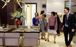 Chủ sở hữu BĐS bị ảnh hưởng thế nào từ việc thu thuế cho thuê căn hộ?