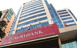 Sau cổ phần hoá, Agribank phải đi thuê trụ sở