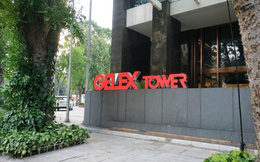 Gelex (GEX): LNST quý 1 tăng 211% lên 291 tỷ đồng, lãi kinh doanh chứng khoán tăng mạnh