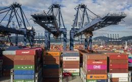 Một trong những cảng biến lớn nhất thế giới phải đóng cửa vì dịch Covid-19 lây mạnh