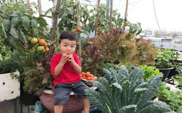 Sân thượng 100m² xanh tươi rau quả sạch của mẹ đảm ở Đà Nẵng