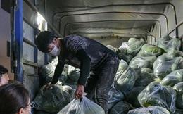 Xuyên đêm giải cứu dưa hấu từ vùng dịch Bắc Giang