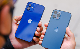 Đây là chiếc iPhone bán chạy nhất của Apple thời gian vừa qua