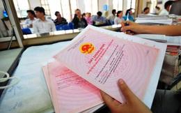 Tp.HCM giao quyền cấp sổ đỏ cho các chi nhánh văn phòng đăng ký đất đai