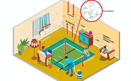Hơn 6.000 hạt vi nhựa lắng đọng trên mỗi mét vuông nhà bạn mỗi ngày, chúng có thể gây hại như thế nào?