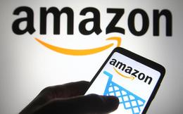 Nghịch lý của việc phát triển thương hiệu trên Amazon: Bán hàng hay thuê khách hàng?