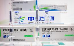WHO cấp phép cho vắc xin Sinopharm của Trung Quốc