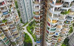 Vì sao giá nhà thế giới đã và sẽ vẫn tăng không ngừng?
