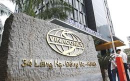 Vinaconex lên kế hoạch huy động 2.200 tỷ trái phiếu, bổ sung vốn cho Cát Bà Amatina