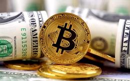 Nhà đầu tư Bitcoin Mỹ lãi hơn 4 tỷ USD trong năm 2020