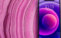 Bạn nên mua iPhone 12 ngay bây giờ hay đợi iPhone 13?