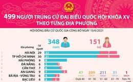 Infographics: 499 người trúng cử Đại biểu Quốc hội khóa XV theo từng địa phương