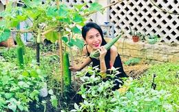 Khu vườn 100m2 xanh tươi của Thủy Tiên - Công Vinh trong biệt thự ở khu nhà giàu: Đầy rau trái xum xuê, ai cũng mơ ước!