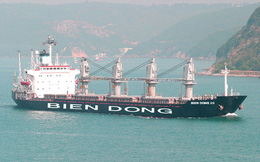 Ngân hàng rao bán khoản nợ 500 tỷ thế chấp bằng tàu biển, trụ sở công ty con Vinalines