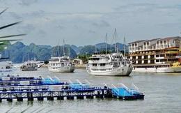 240 chủ tàu tại Quảng Ninh bên bờ phá sản xin giãn nợ