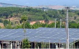 """Nhà đầu tư điện mặt trời """"méo mặt"""" vì nợ"""