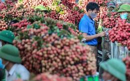Việt Nam xuất 2,5 triệu tấn trái cây tươi sang Trung Quốc