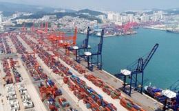Ổ dịch Covid-19 ở Trung Quốc không có ca mắc mới, chuỗi cung ứng toàn cầu sắp thoát hiểm?
