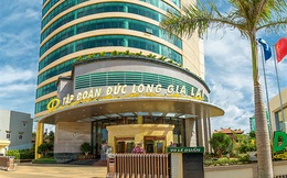 Lãnh đạo Đức Long Gia Lai (DLG) đăng ký mua 10 triệu cổ phiếu