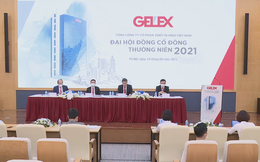 Gelex (GEX) lãi gần 900 tỷ đồng sau 6 tháng, có khả năng tăng giá bán thành phẩm nửa cuối năm do nguyên vật liệu và logistics tăng cao