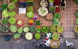 """Việt Nam lọt top """"điểm đến ẩm thực tốt nhất thế giới"""" do Lonely Planet bình chọn, nghe lời tạp chí nổi tiếng giới thiệu còn tự hào hơn"""