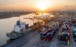 Kinh tế 2021: Phục hồi và trắc trở
