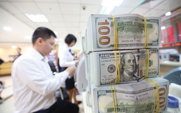 Từ tín hiệu của Fed, nhìn vào một thực lực của Việt Nam