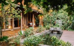 Cuộc sống yên bình trong ngôi nhà nhỏ và khu vườn xanh mát bóng cây ở ngoại thành Hà Nội