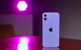"""Nhà bán lẻ Việt Nam rục rịch """"khai tử"""" iPhone 12 mini"""