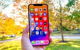 """Năm sau Apple sẽ cho ra mắt iPhone 14 Max giá mềm, fan của iPhone màn hình lớn """"gom thóc"""" dần đi là vừa"""