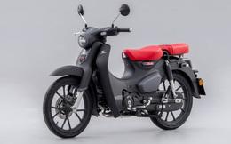 """""""Huyền thoại"""" Honda Super Cub 125 có bản nâng cấp, giá tương đương 77,5 triệu đồng"""