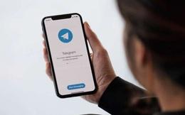 Cuối cùng, Telegram đã có tính năng gọi video nhóm