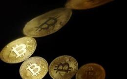 Thêm một quốc gia tính đưa Bitcoin thành phương tiện thanh toán chính thức?