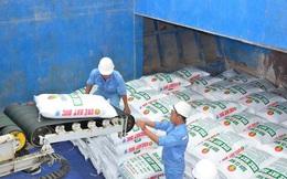 Xuất khẩu phân bón tăng kỷ lục đạt gần 213 triệu USD