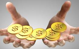 Xuất nhập khẩu Bình Thạnh (GIL) triển khai phương án phát hành 7,2 triệu cổ phiếu trả cổ tức