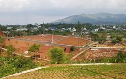Lâm Đồng: Tạm đình chỉ công tác 3 cán bộ liên quan việc hiến đất, tách thửa ở Bảo Lộc