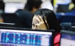 """PE đã trên 19 lần, nhiều cổ phiếu tăng """"nóng"""", thị trường chứng khoán trước nguy cơ phải điều chỉnh?"""