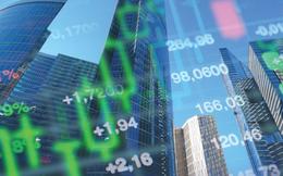 IDJ triển khai phương án chào bán 73 triệu cổ phần cho cổ đông hiện hữu