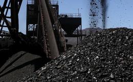 Cơn sốt giá quặng sắt chưa dịu, thế giới lại chứng kiến tiếp cơn sốt giá than đá