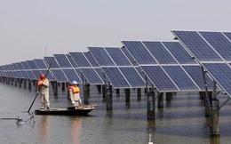 Đây là cách Trung Quốc chiếm ngôi đầu trong ngành công nghiệp điện mặt trời