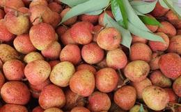 Đà Nẵng chung tay hỗ trợ tiêu thụ nông sản cho bà con nông dân