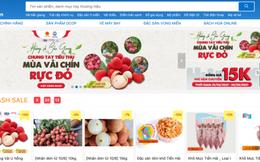 6 sàn thương mại điện tử Việt Nam sẽ đồng loạt mở bán vải thiều Bắc Giang