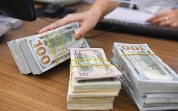 Ngân hàng Nhà nước sắp hạ mạnh giá mua USD?