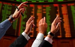 Nam Long (NLG) chào bán 60 triệu cổ phần giá tối đa 37.800 đồng/cp, Gelex là 1 trong 2 nhà đầu tư mua vào lượng lớn