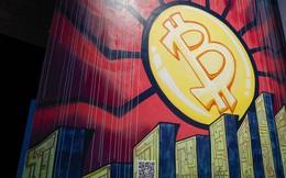 Nhiều chuyên gia nhận định giá Bitcoin sẽ xuống 20.000 USD
