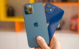 """iPhone 12 cán mốc 100 triệu máy bán ra - """"máy in tiền"""" của Apple là đây chứ đâu"""