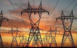 Tư vấn Xây dựng Điện 2 (TV2) chốt quyền nhận cổ tức bằng tiền và cổ phiếu tổng tỷ lệ 35%