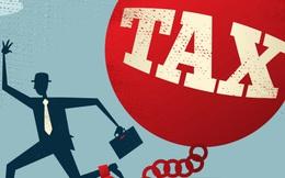 Một công ty truyền thông bị phạt và truy thu thuế gần 470 triệu đồng