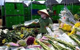 Hàng vạn cành hoa Đà Lạt không xuất khẩu được phải đổ bỏ, Bộ Nông nghiệp nói gì?